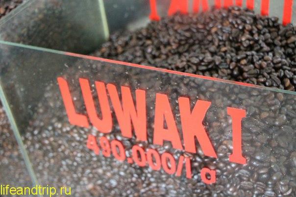 лювак -кофе во Вьетнаме