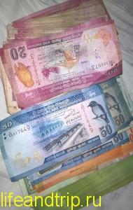 Какие деньги брать на Шри-Ланку?